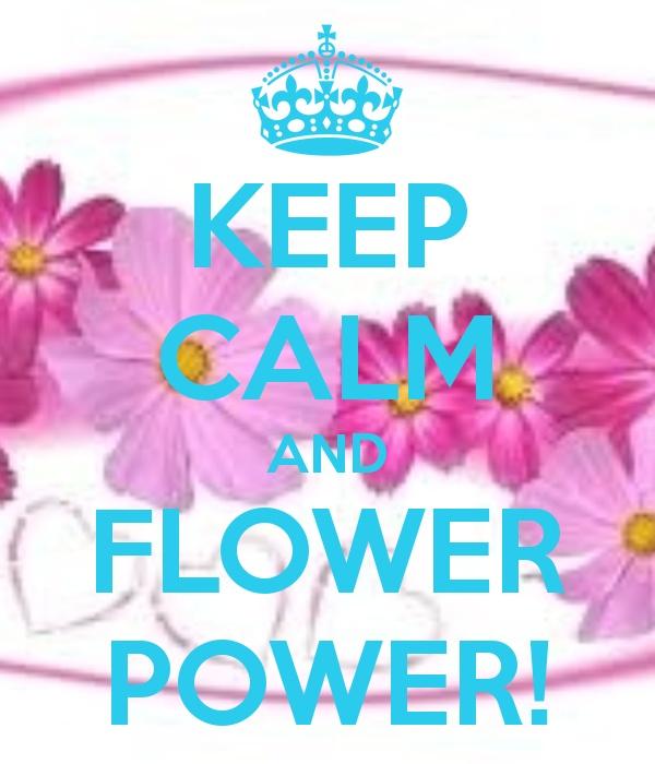 sorteo flower power