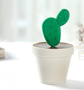 palillero cactus
